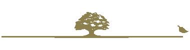 family-tree-inverse-logo